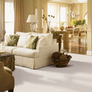 Carpet flooring | Elite Flooring and Interiors Inc
