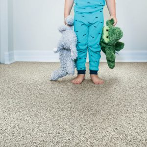 Grey Carpet | Elite Flooring and Interiors Inc