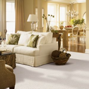 Gentle approach of carpet | Elite Flooring and Interiors Inc