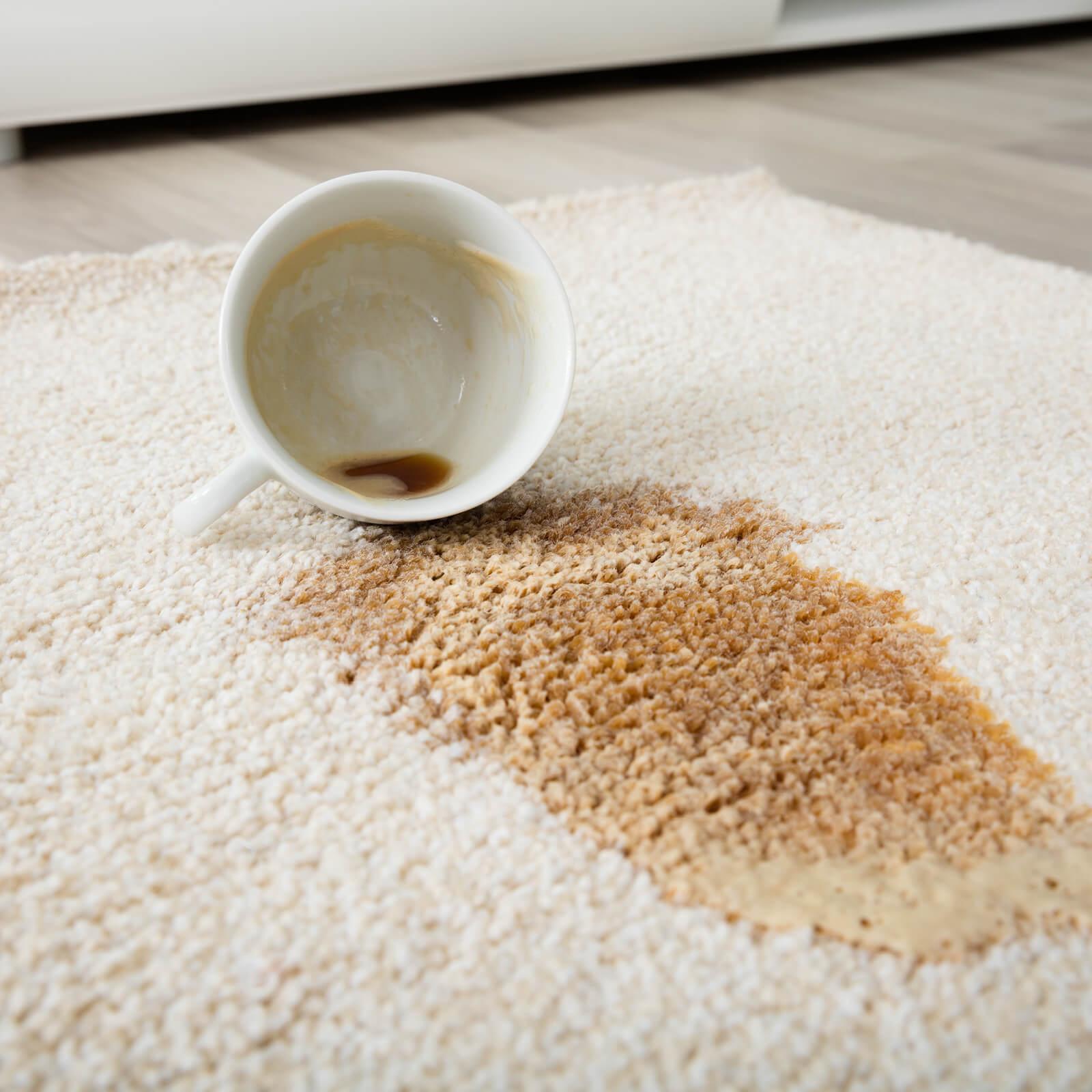 Carpet cleaning | Elite Flooring and Interiors Inc