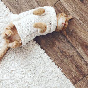 Hardwood flooring | Elite Flooring and Interiors Inc