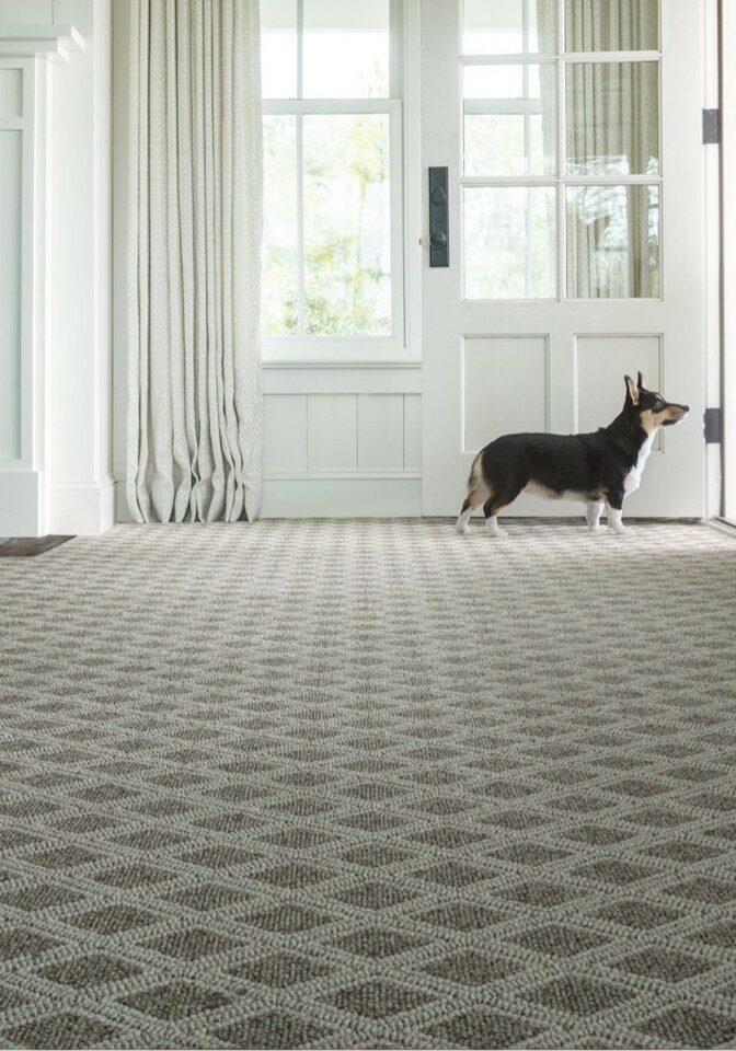 Carpet flooring | Elite Flooring and Interiors Inc